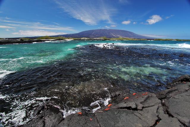How Do You Get To The Galapagos Islands From Ecuador