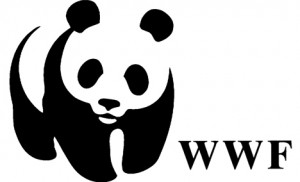 world-wildlife-fund-wwf-logo-panda-face-eyes-nose-mouth-black-white-fur-body-legs-type-illustration-graphic-image