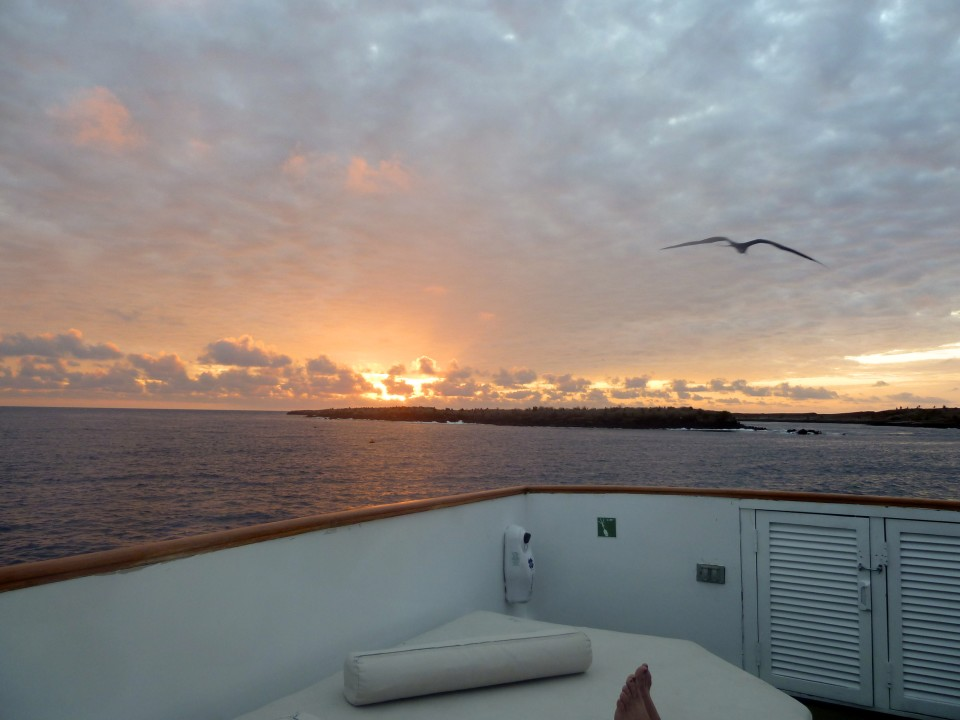 Galapagos Cruise - pointstravel